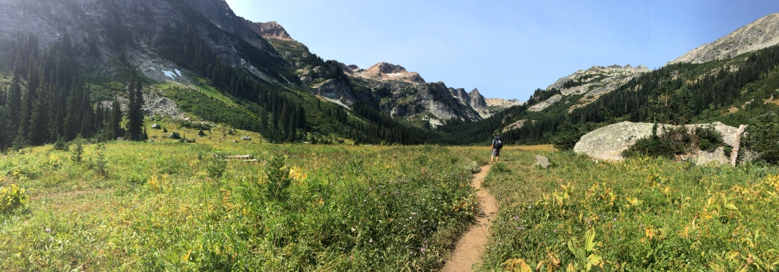 Marching into Spider Meadow