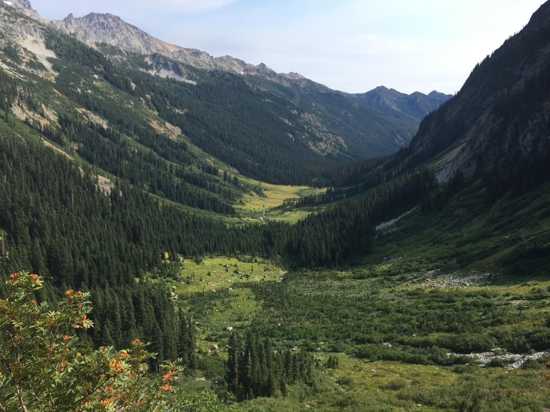 Looking back at Spider Meadow.