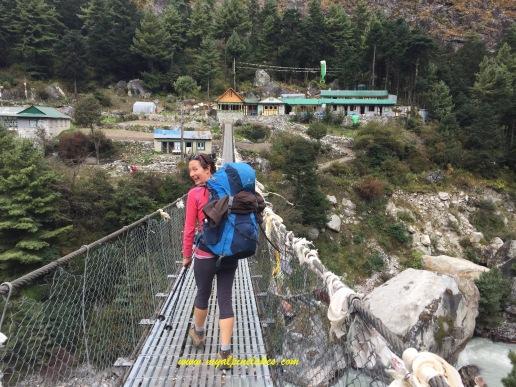 one of many many bridges