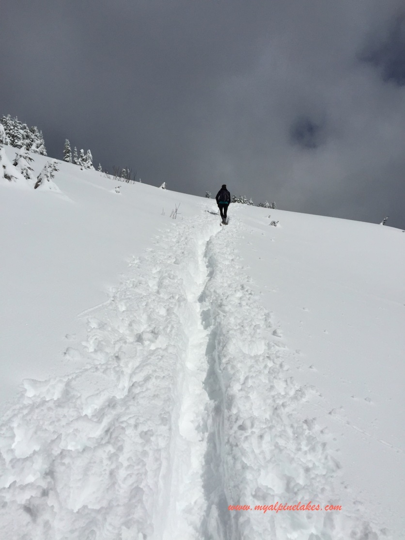 Once you are near the top, the trail flattens a bit