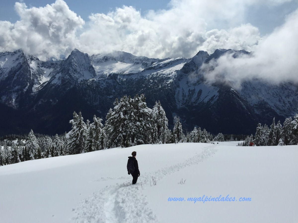 A Snowy Wonderland Up Mt Dickerman