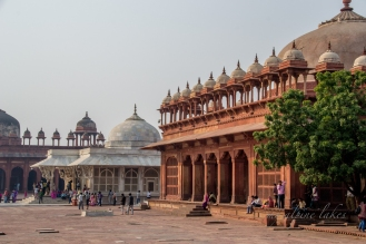 Jama Masjid, one of the largest mosques in India. It is a perfect place for architecture appreciation and people watching.