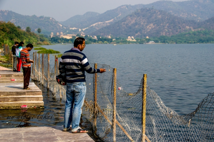Feeding catfish in the lake is a common practice to commemorate loved ones in Lake Jaipur