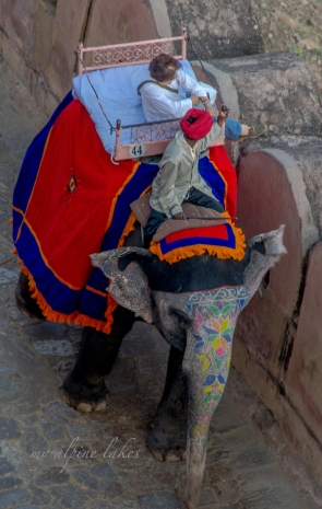 A western woman riding an elephant up to the entrance of the castle