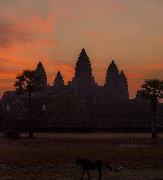 Sunset on Angkor Wat