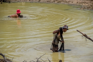Fisherman looking for fish in a muddy pond.