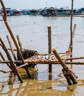 Drying fish on a bamboo platform