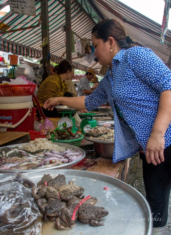 This lady is picking up some frogs at a local market.