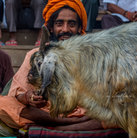 A Sadhu smiles as I positioned myself to take a picture of him petting a stray goat.