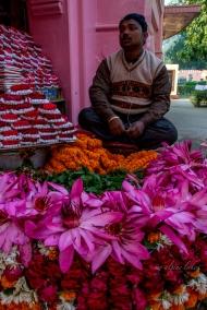 A flower vendor in a lotus pose.