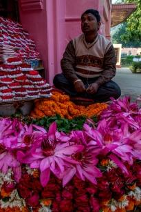 A flower vendor in a lotus pose.