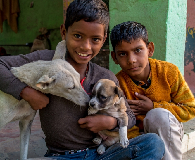 Boys and puppies.