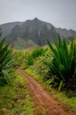 Enter Kalalau Valley