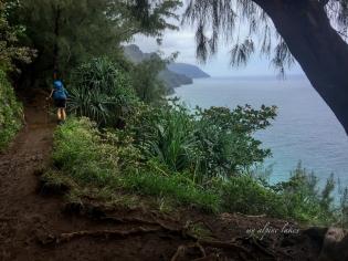 Peeking out at the coastline