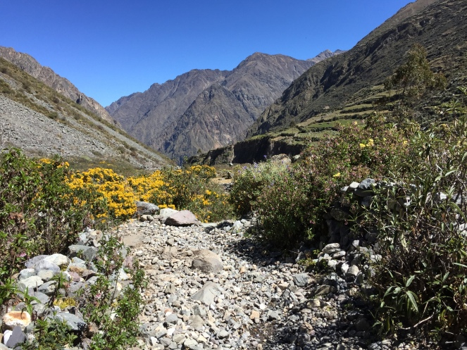scree trail leading us to Huayllapa