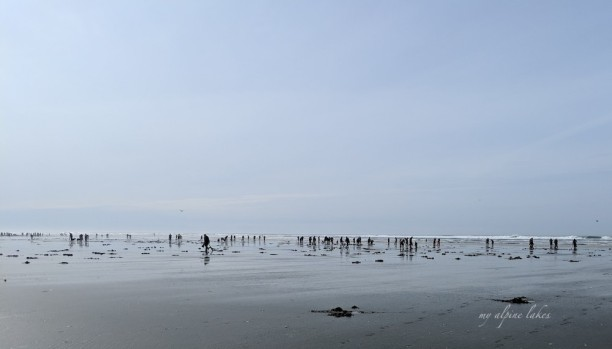 In the hazy world where earth meets the sky, hundreds of people bow their heads searching for clams.